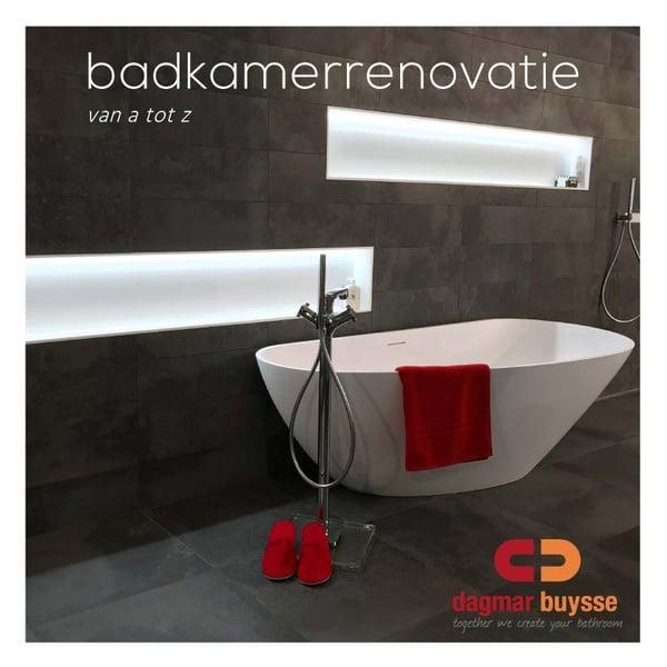Dagmar Buysse - E-book - badkamerrenovatie